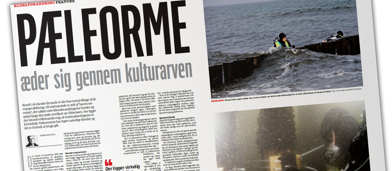 BalticRIM mentioned in the Danish news